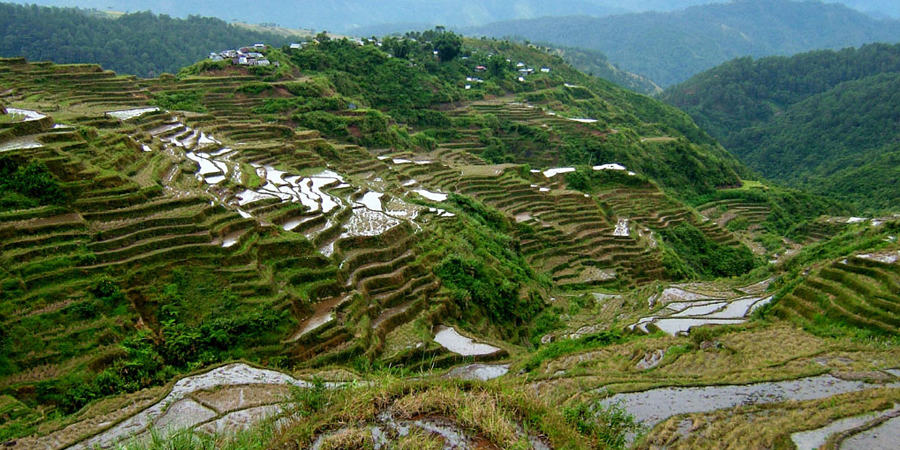 Feedback für PhilStep von zufriedenen Kunden: Nord-Luzon Tour wurde zum Erlebnis!